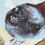 art-camilla-eltell-1
